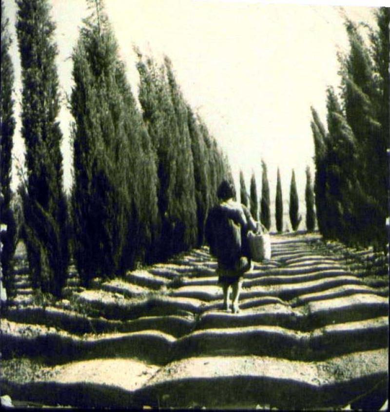 נוף משמר העמק  1930-1939